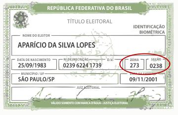 quadro1_titulo_eleitor.png