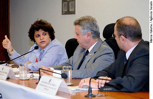 Izabella Teixeira: veto ao Código Florestal deve ser 'realista'
