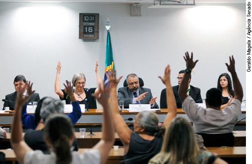 Participantes da audiência, o Sen. Paulo Paim, o presidente do CONADE e outros
