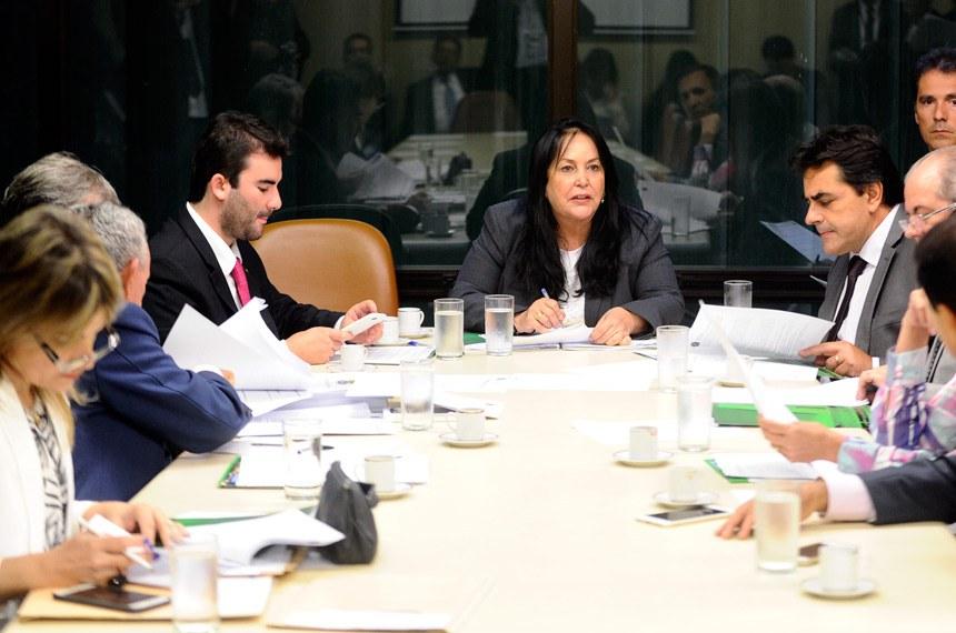 Rose de Freitas prorrogou o prazo para emendas ao relatório até 15 de março