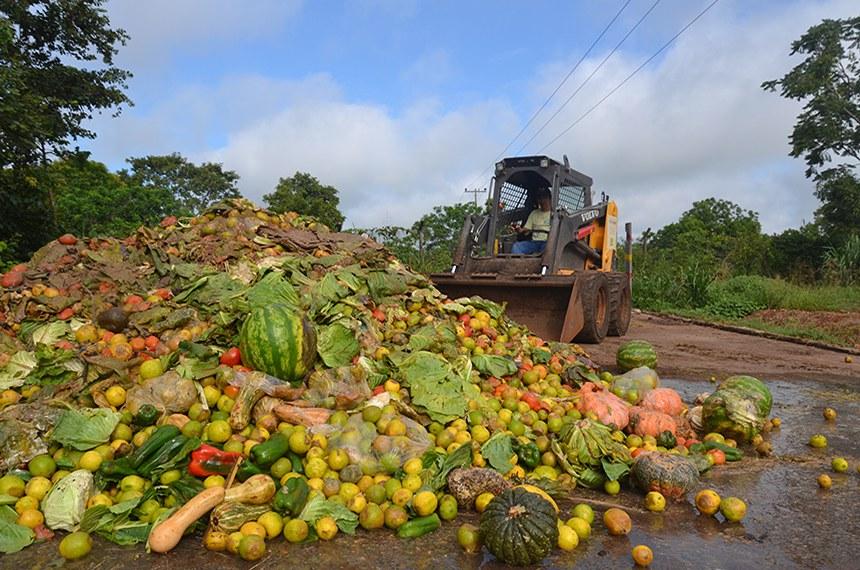 Cerca de 1,3 bilhão de toneladas de alimentos vai para o lixo a cada ano, segundo a FAO