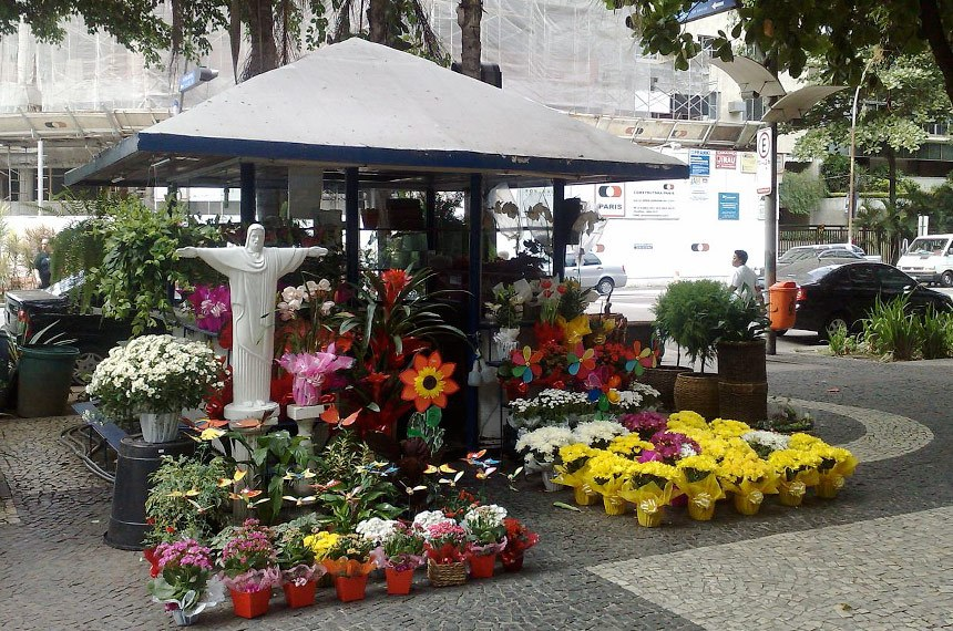 Bancas de flores e de jornal são beneficiadas pela lei