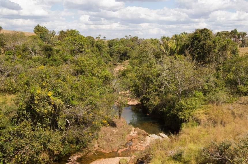 Girassol, GO. 16/07/11. Rio Pichua, mata ciliar, rio, vegetacao nativa, proximo a rodovia Br070. Foto: Dorivan Marinho