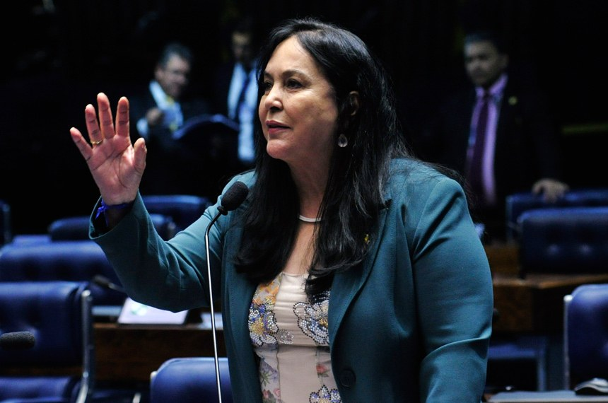 Plenário do Senado durante sessão deliberativa ordinária.  Em pronunciamento, senadora Rose de Freitas (PMDB-ES).  Foto: Geraldo Magela/Agência Senado