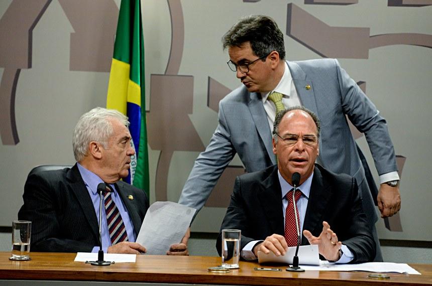 Comissão Especial do Desenvolvimento Nacional (CEDN)   Foto: Jefferson Rudy/Agência Senado