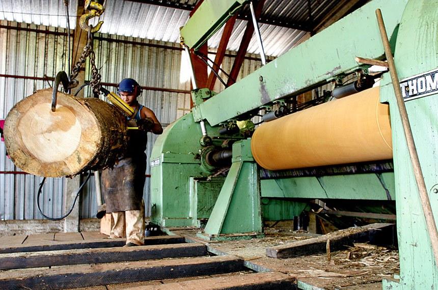 Foto: Ednilson Aguiar/Secom-MT Data: 18/05/2004  Madeira Legal - Funcionários trabalham na Madereira Brasnorte.  A extração e o beneficiamento de madeira ainda são um dos pilares da economia de Brasnorte, no Noroeste de MT