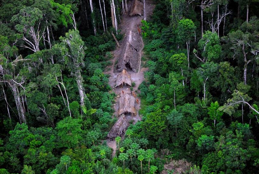 Parte dos recursos serão direcionados às comunidades da floresta, como os povos indígenas