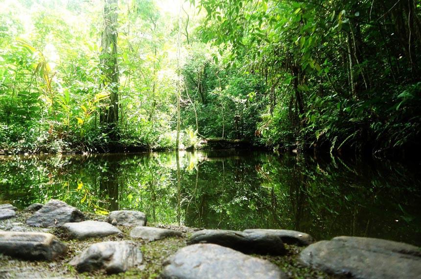 04.11.2014Santuário de Silvestre Vagafogo, em Pirinópolis (GO) é uma Reserva Particular do Patrimônio Natural (RPPN)