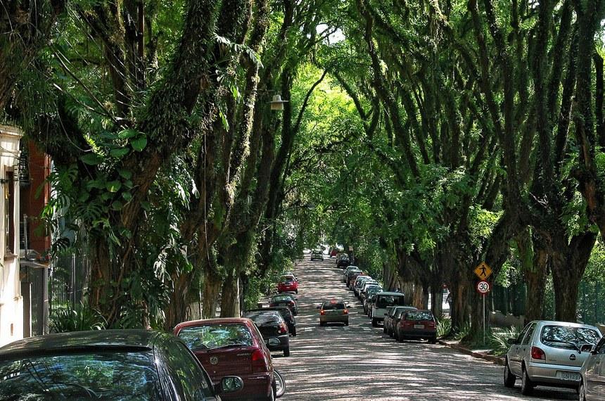 """Rua Gonçalo de Carvalho é uma rua localizada no bairro Independência da cidade de Porto Alegre, capital do estado brasileiro do Rio Grande do Sul. Ladeada de árvores do gênero tipuana, tornou-se conhecida internacionalmente após uma campanha por sua preservação, que se espalhou pela internet e levou a via a ser apelidada de """"a rua mais bonita do mundo"""" e a ser considerada """"patrimônio ambiental"""" pela prefeitura."""