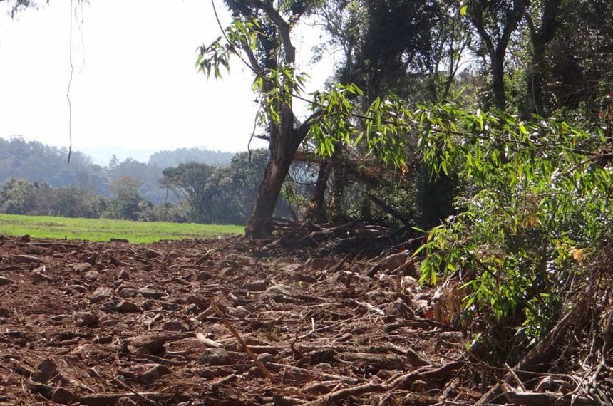 A Divisão de Fiscalização Ambiental da Fundação Estadual de Proteção Ambiental (Fepam) realizou uma operação de fiscalização para coibir o desmatamento irregular no Bioma Mata Atlântica no município de Muçum, no Vale do Taquari.