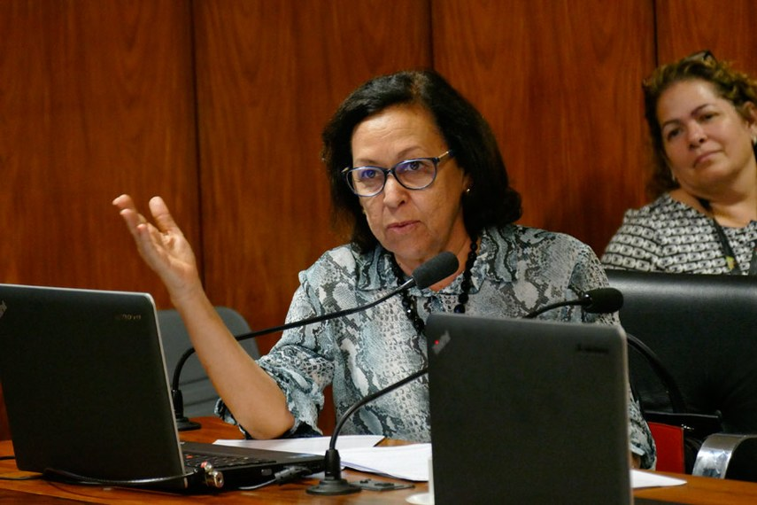Relatora da matéria na Comissão de Constituição, Justiça e Cidadania, a senadora Lídice da Mata propõe alterações no texto