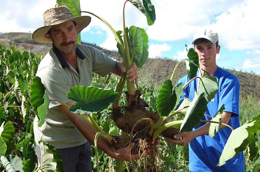 Data da foto: ?  Família de agricultores no Espírito Santo.