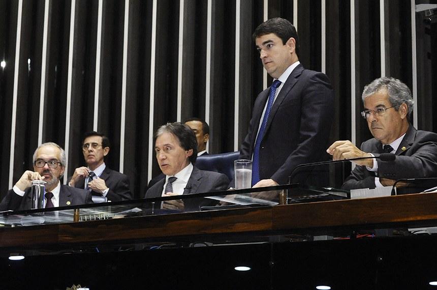 Luiz Fernando Bandeira (em pé) assessora senadores durante sessão plenária