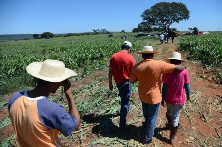 04/05/2013  ABR040513PZB 8412 Brasília - Cerca de 450 famílias de trabalhadores rurais sem terra ocupam a Fazenda Lagoa Bonita, em Planaltina (DF). Eles querem que a fazenda seja transformada em assentamento para a produção agrícola.