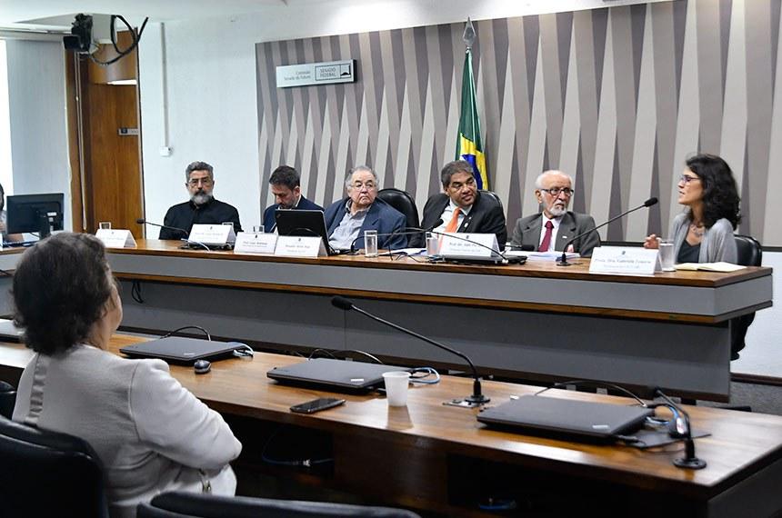 A professora Gabriela Tenório fala em audiência presidida por Hélio José (4º à esq.)