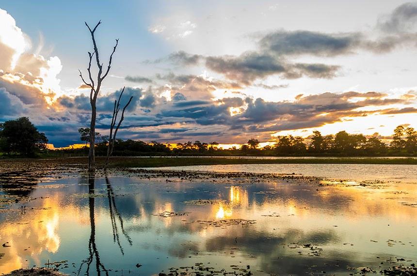 Pôr-do-sol no Pantanal em Mato Grosso