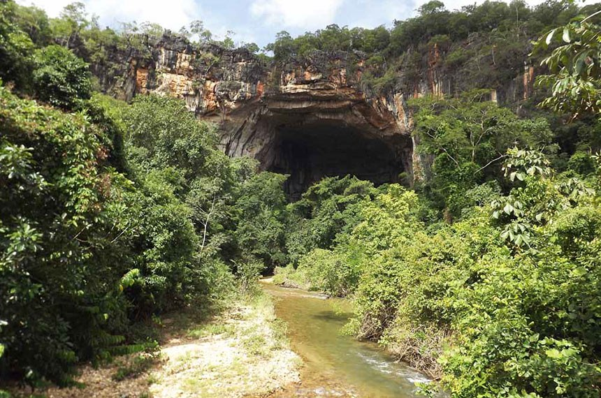 Lapa Terra Ronca ou Caverna Terra Ronca é uma caverna de calcário localizada dentro da área do Parque Estadual Terra Ronca, no estado de Goiás, Brasil.