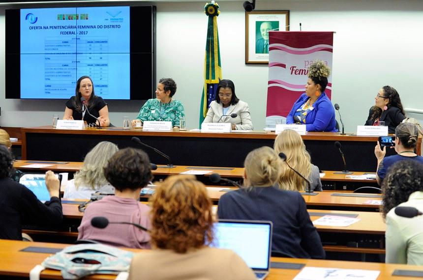Reunião sobre o aumento do encarceramento feminino