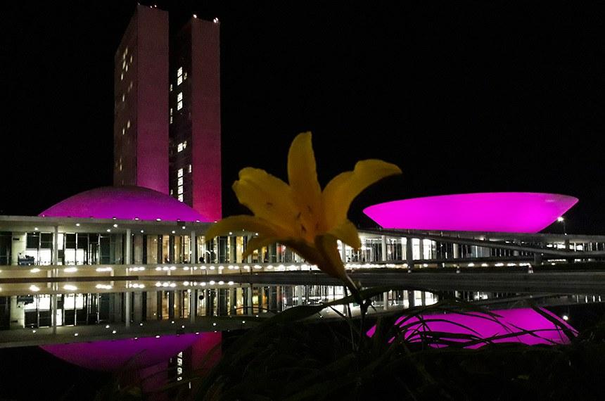 Lançamento da campanha Outubro Rosa marca oficialmente o início das atividades de prevenção ao câncer de mama.   O Palácio do Congresso Nacional ganha uma iluminação especial cor-de-rosa.   Foto: Jonas Pereira/Agência Senado