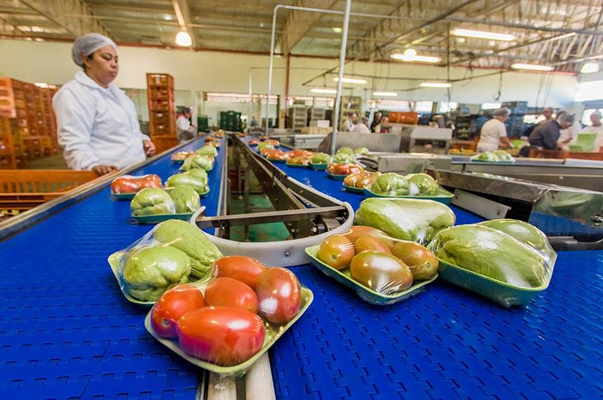 Inauguração do packing house da Cooperativa Agrícola de Ibiúna (Caisp)  O Governador do Estado de São Paulo Geraldo Alckmin, participou da Inauguração do packing house da Cooperativa Agrícola de Ibiúna (Caisp). Local: ibiuna/SP. Data: 28/06/2017.