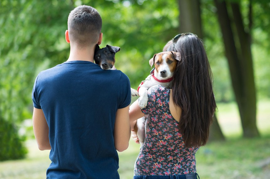 Young couple in love,walking and enjoy in park with his dogs.Focus on right dog
