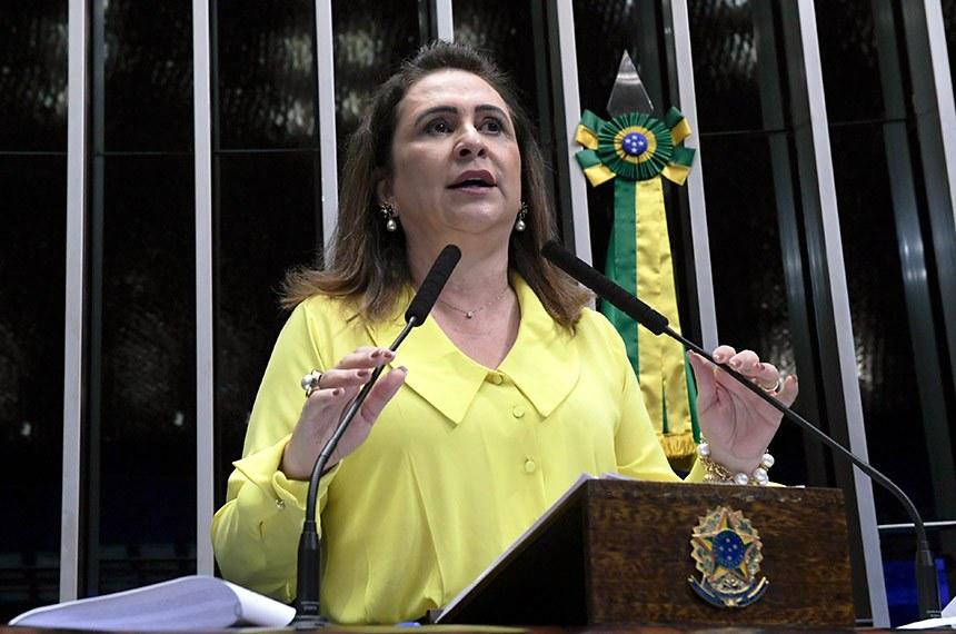 Plenário do Senado Federal durante sessão deliberativa ordinária.   Em discurso, à tribuna, senadora Kátia Abreu (PDT-TO).  Foto: Roque de Sá/Agência Senado