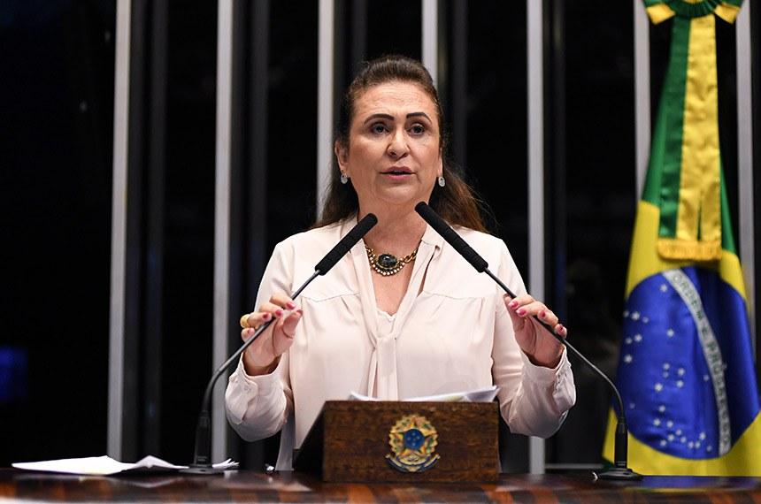 Plenário do Senado Federal durante sessão não deliberativa.   Em discurso, à tribuna, senadora Kátia Abreu (PDT-TO).  Foto: Jefferson Rudy/Agência Senado