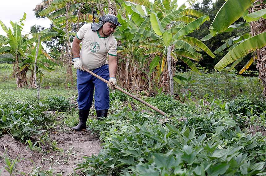 BIE - Cidade de Guaraciaba do Norte/CE  O município é um grande produtor de produtos alimentícios, principalmente horticultura de tomate, repolho e assemelhados. O município é um bom produtor de cana-de-açúcar, tendo vários engenhos de açúcar para beneficiamento da cana e para a produção de derivados da mesma, como rapadura, puxa etc. Destaca-se também na produção de alimentos orgânicos.   Foto: Marcos Oliveira/Agência Senado