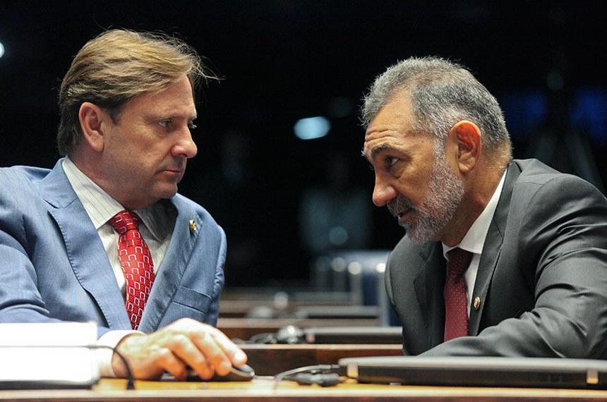 Plenário do Senado durante sessão não deliberativa.  E/D: senador Acir Gurgacz (PDT-RO); senador  Telmário  Mota (PDT-RR).  Foto: André Corrêa/Agência Senado
