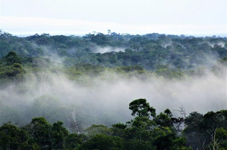 BIE - As nuvens baixas abraçam a floresta amazônica durante o amanhecer.   Foto: Valter Calheiros/Musa