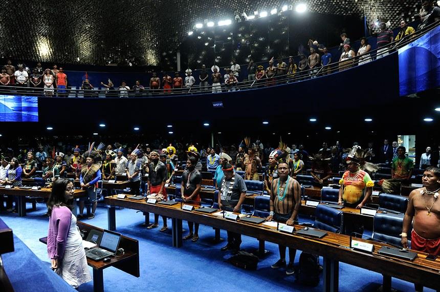 Plenário do Senado Federal durante sessão especial destinada a homenagear os povos indígenas.   Em posição de respeito, convidados e parlamentares acompanham execução do Hino Nacional Brasileiro.    Foto: Jane de Araújo/Agência Senado