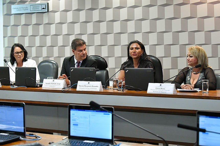 Comissão de Educação, Cultura e Esporte (CE) realiza audiência pública interativa destinada