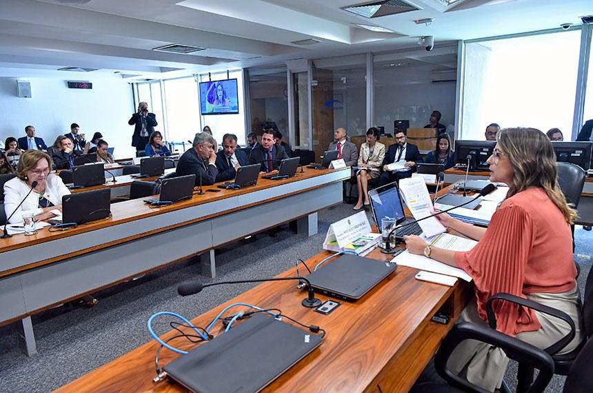 Presidente da Comissão de Agricultura, a senadora Soraya Thronicke (D) propôs a audiência