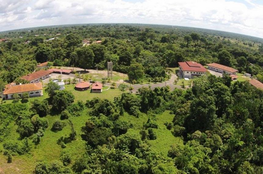 O Instituto Mamirauá, criado em 1999, é supervisionado pelo governo e desenvolve atividades de pesquisa, manejo de recursos naturais e desenvolvimento social, na região do Médio Solimões, no Amazonas