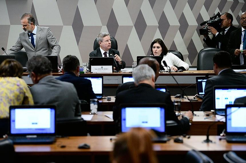 A presidente da CCJ, Simone Tebet, e o relator da proposta, Antonio Anastasia, na reunião desta quarta-feira