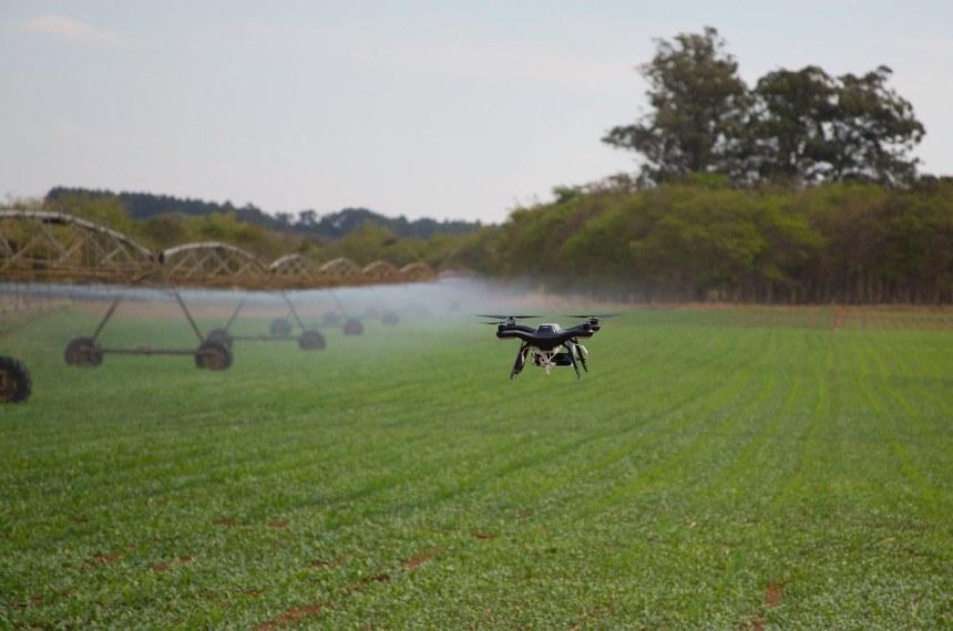 """Drone da Embrapa coleta dados de lavoura para a chamada """"agricultura de precisão"""": senador Chico Rodrigues, que pediu o debate, quer detalhar relação entre tecnologia e produtividade agrícola"""