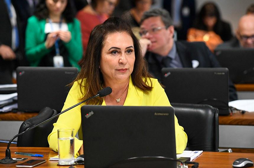 Comissão de Assuntos Econômicos (CAE) realiza reunião deliberativa com 21 itens. Na pauta, o PLC 113/2015-Complementar, que cria a Sociedade de Garantia Solidária.   Foto: Jane de Araújo/Agência Senado