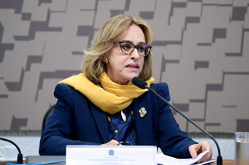 Maria Edileuza Fontenele Reis foi sabatinada pela Comissão de Relações Exteriores na semana passada