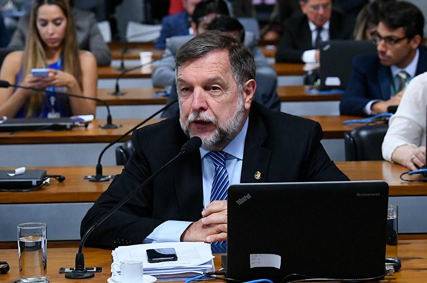 O senador Flávio Arns foi responsável por apresentar, na reunião da CDH, o relatório elaborado pela senadora Mara Gabrilli à proposta da senadora Daniella Ribeiro