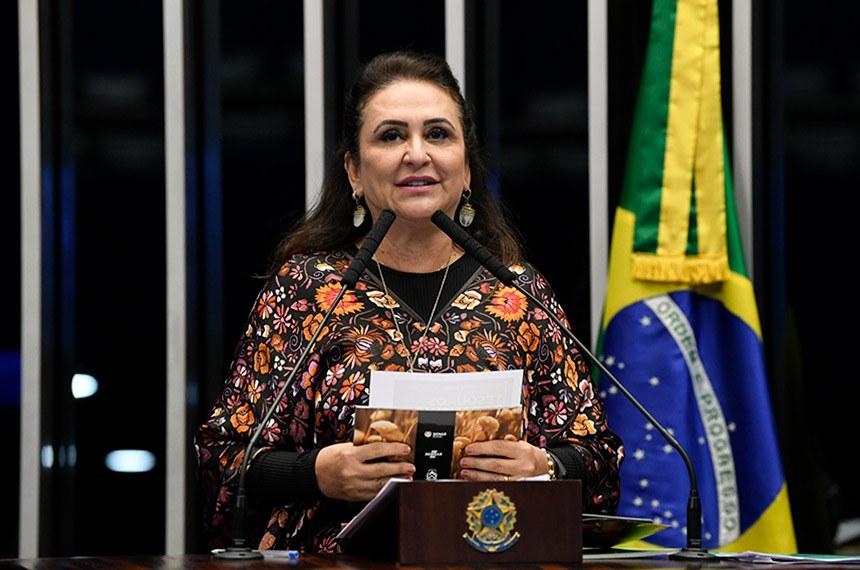 Plenário do Senado Federal durante sessão deliberativa ordinária.   Em discurso, à tribuna, senadora Kátia Abreu (PDT-TO).  Foto: Jefferson Rudy/Agência Senado