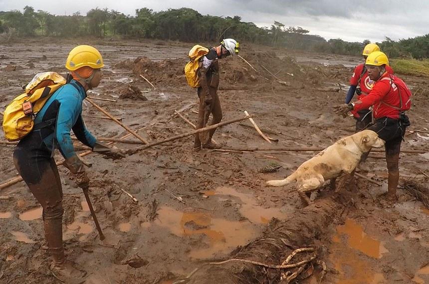Ações operacionais do CBMDF em Brumadinho-MG no sábado (16). Equipe que vai atuou do remanso 3 - parte mais alagada da área atingida. Imagens da extração da equipe DF 03 do campo de buscas pelo helicóptero.