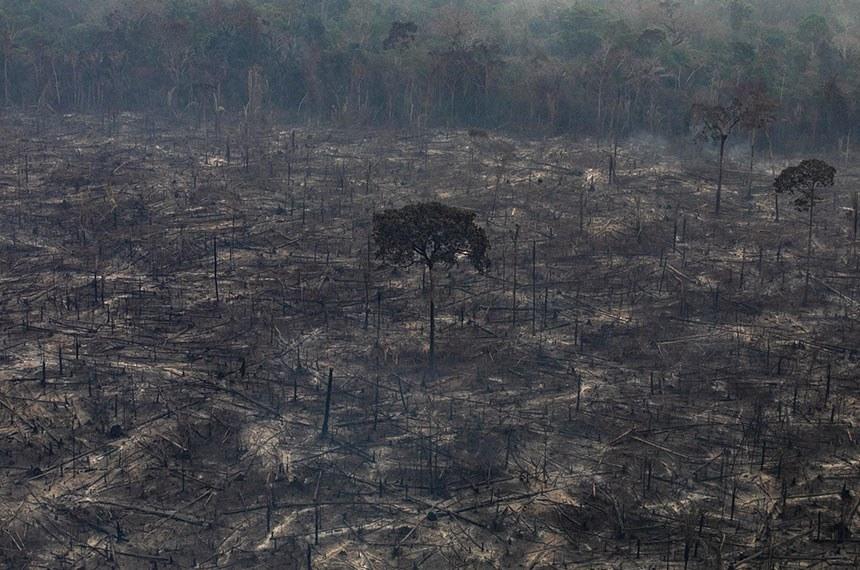 24.08.2019 Queimadas na Amazônia - Terceiro Sobrevo (2019)PORTO VELHO, RONDÔNIA, BRASIL. A cidade de Porto Velho, Rondônia.  O número de focos de incêndio registrados na Amazônia em 2019 é um dos maiores nos últimos anos. De janeiro a 20 de agosto, o número de incêndios na região foi 145% maior que no mesmo período de 2018. O Greenpeace fez um sobrevôo em vários locais da Amazônia para documentar e registrar a extensão da destruição causada por incêndios e desmatamento.(Foto: Victor Moriyama / Greenpeace)