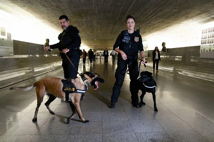 Polícia Legislativa do Senado Federal recebe cães detectores.   Foto: Geraldo Magela/Agência Senado