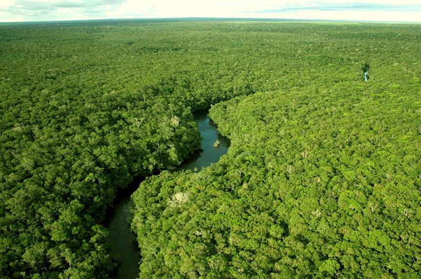 Floresta Amazônica- Amazônia ou Amazónia é uma floresta latifoliada úmida que cobre a maior parte da Bacia Amazônica da América do Su