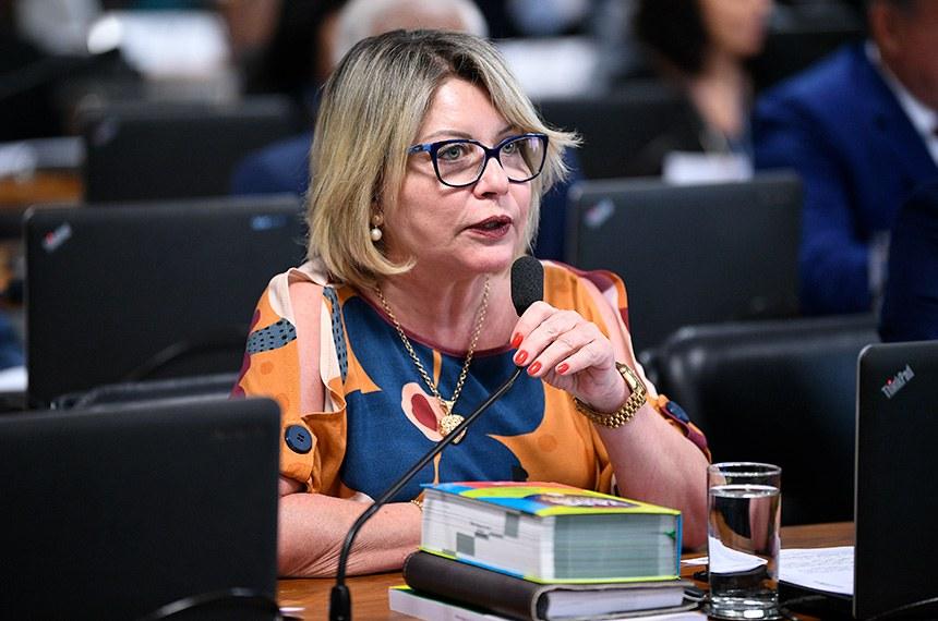 A relatora Juíza Selma apresentou um substitutivo com alterações no texto do PLS 166/2018