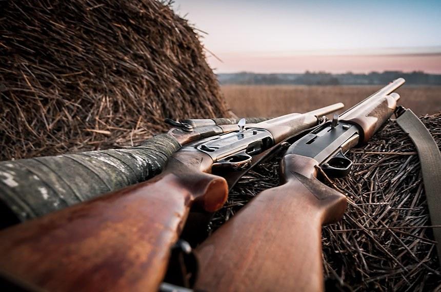 Caça espingardas no celeiro durante o nascer do sol na expectativa de caça.   Foto: splendens