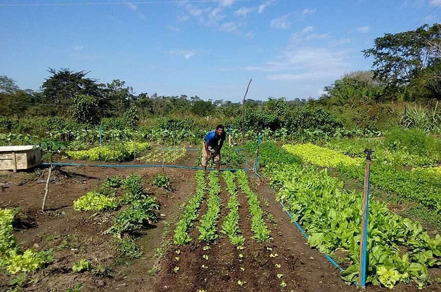 Entrega dos Kits de Irrigação na Comunidade do Imbé. Irrigação de agricultura familiar, assentamento.