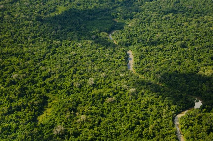 Vista aérea da TI Yanomami (em 2012), no Alto Rio Catrimani, divisa dos estados de Roraima e Amazonas. É a maior reserva indígena do planeta com pouco mais de 10 milhões de hectares Edson Sato
