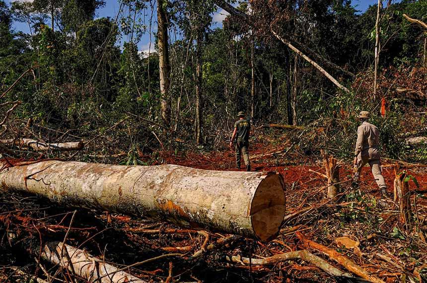 Operação Amazônia Arco Norte na região de Aripuanã  Operação Amazônia Arco Norte na região de Aripuanã Fotos: Mayke Toscano/Secom-MT