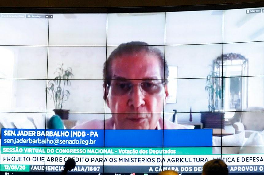 Sessão deliberativa remota do Congresso Nacional Destinada à deliberação de vetos projetos de lei do Congresso Nacional. Sen. Jader Barbalho  Foto - Najara Araujo/Câmara dos Deputados